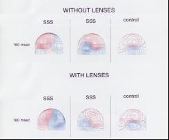 efficient brain cornell research 1