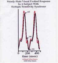 efficient brain cornell research 2